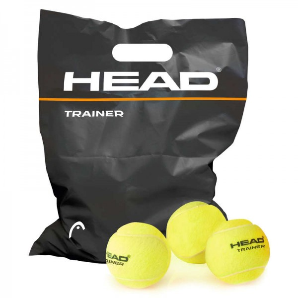 Head Trainer -drucklos-